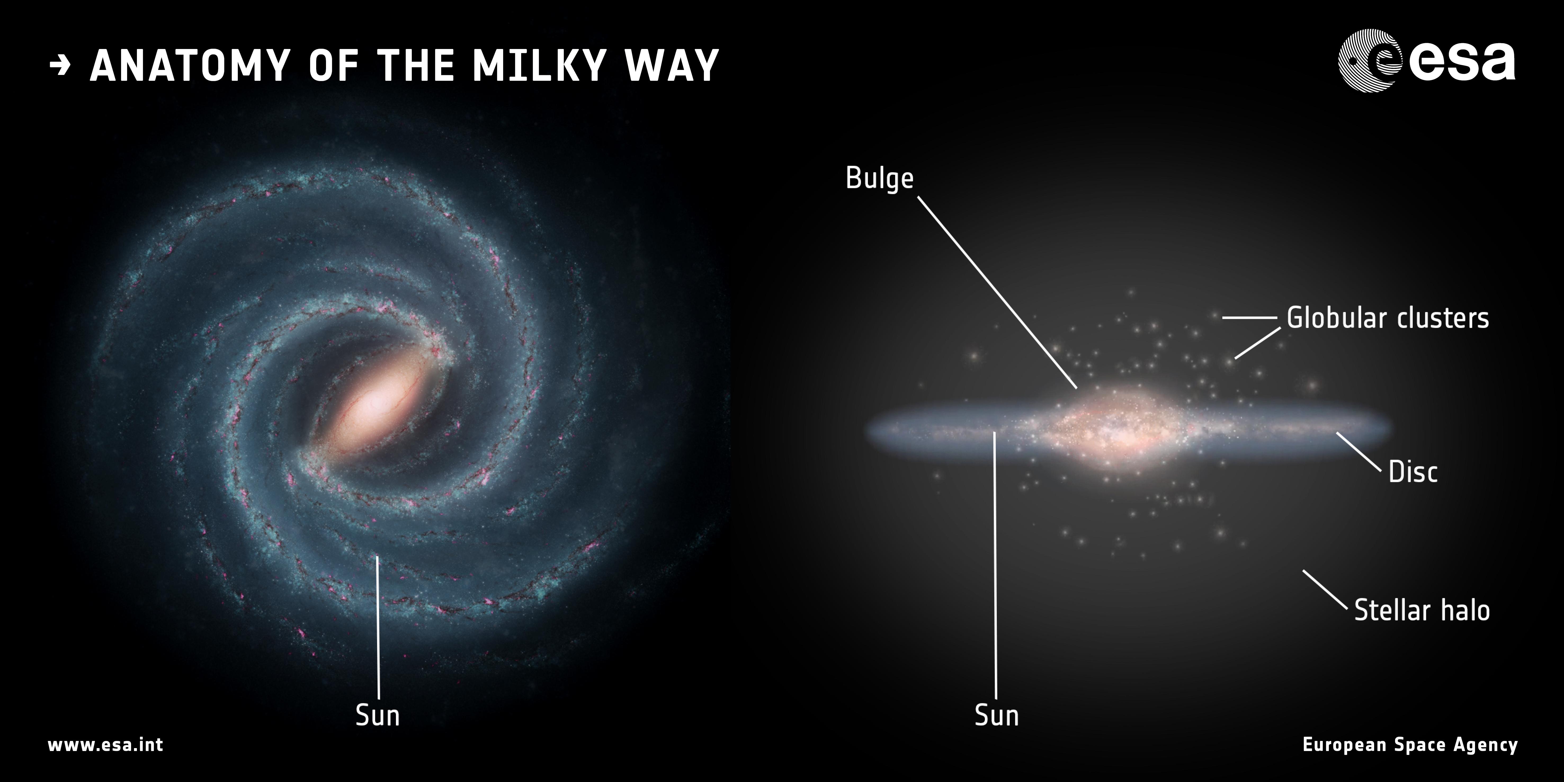 1567215479453-ESA_Gaia_Milky_Way_Anatomy.jpg