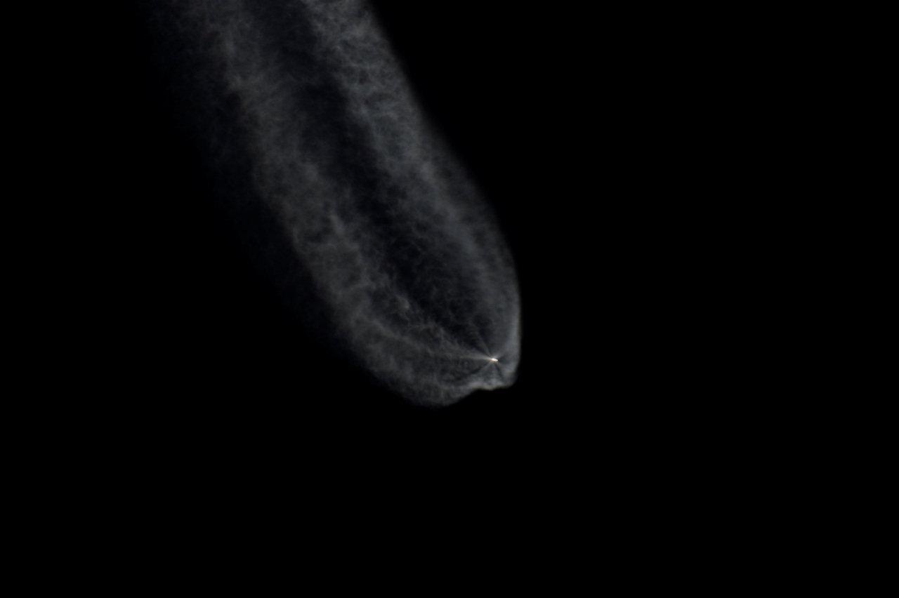 1567216519821-Gaia_liftoff_21_1280.jpg