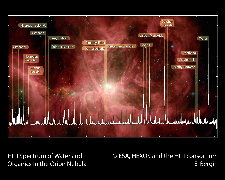 1567217399026-NHSC_Orion_FINAL.jpg