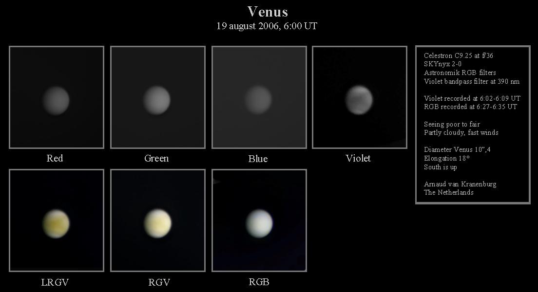 1567217907731-Venus-AvanKranenburg.jpg